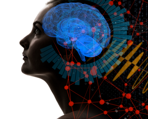 Human Mind and Migration 2 - impactmania