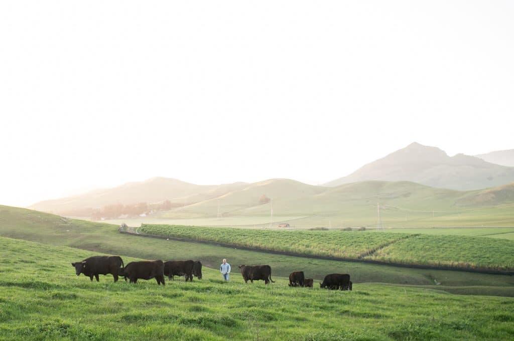 Ostrander's Ranch. Photo by Christopher Bersbach.